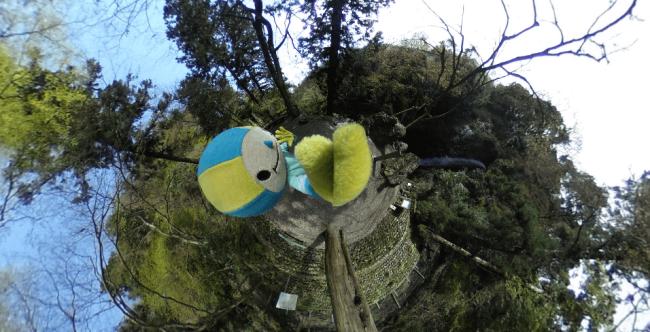 「養老の滝」とミナモ(THETAで撮影)