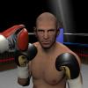 20160704_boxing_icatch
