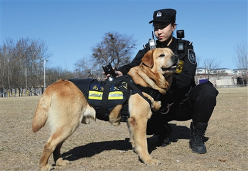 カメラを背負った警察犬と警察官