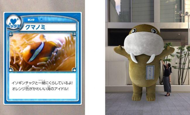 伊豆・三津シーパラダイスにてARアプリ「ARAPPLI(アラプリ)」が採用