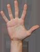 grab-palm