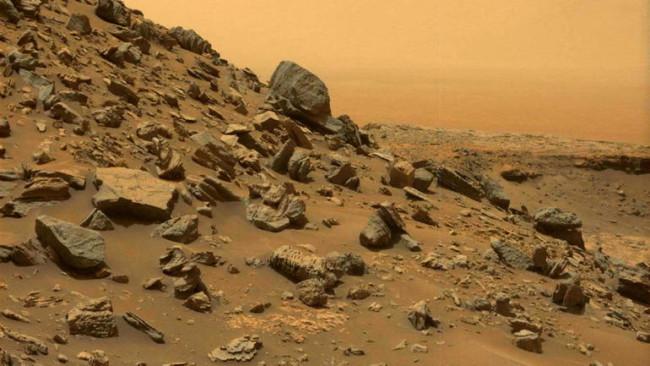 岩が転がる火星の風景