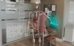 骨格と内臓と左肺のアップ