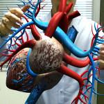 英バーミンガムシティ大学、医療用ARアプリを開発