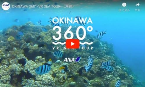 【360°動画】ANA 沖縄の青い海でダイビング体験できる360°動画
