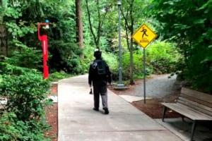 Microsoftが新技術「Dream Walker」のテスト映像を公開