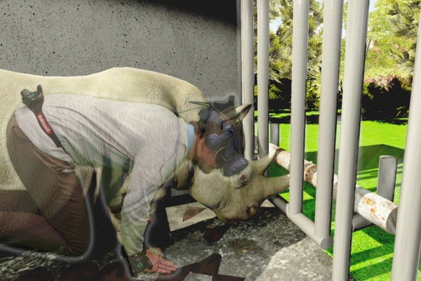 VRニュースイッキ見_ドイツの大学で行われたVRで動物や昆虫になりきる実験