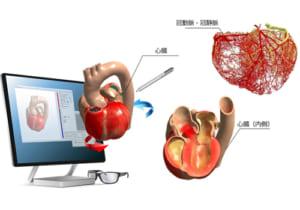 心臓の挙動を学習できる「Heart Explorer」