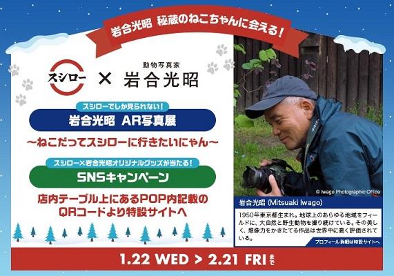 動物写真家 岩合光昭氏とスシローがコラボ!スマホで秘蔵のねこ写真が楽しめる『岩合光昭 AR写真展』限定開催