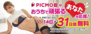 picmo31