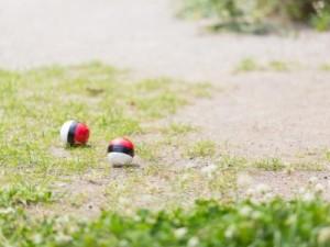 公園にモンスターボール