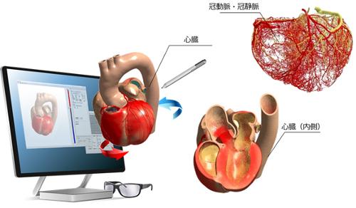 Heart Explorerで心臓をVR化