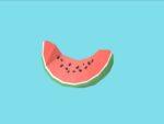 Goggle Blocks-watermelon