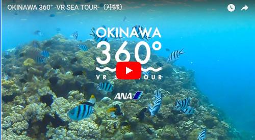 沖縄の海のVR動画